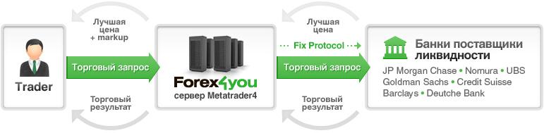 STP Forex
