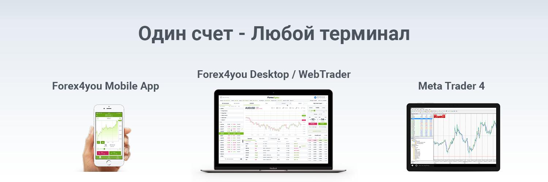 terminal forex4you